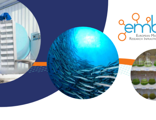 Call for EMBRIC Transnational Access for Marine Biotechnology Research Projects is open